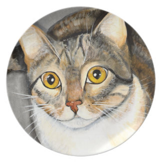 Curious Cat Plate