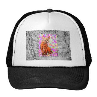 curious cat silver drip trucker hat
