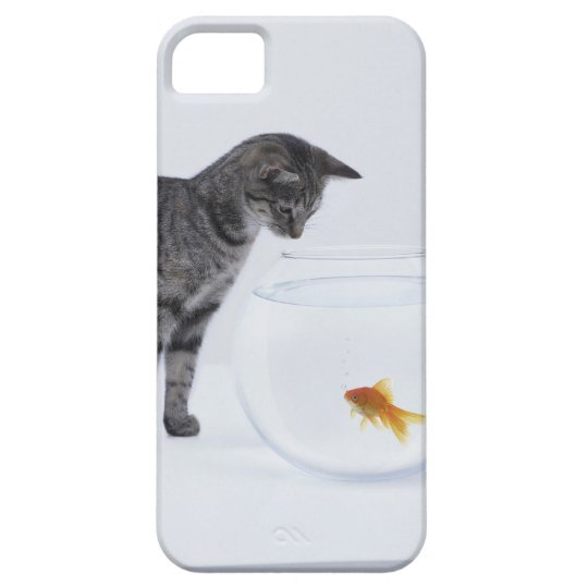 Curious cat watching goldfish in fishbowl iPhone SE/5/5s case