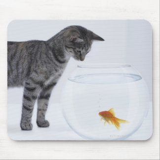 Curious cat watching goldfish in fishbowl mouse pad