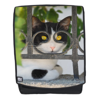 Curious Cat with Spectacles Frame Funny - Boldface Backpack