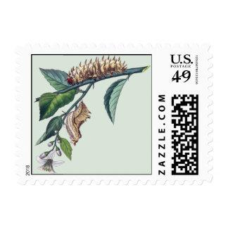 Curious Caterpillar Postage Stamps