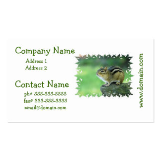 Curious Chipmunk  Business Cards