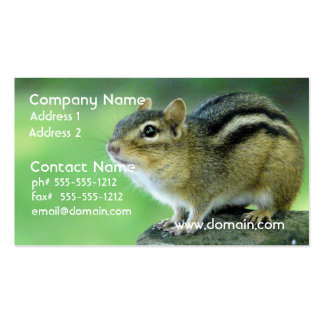 Curious Chipmunk  Business Cards