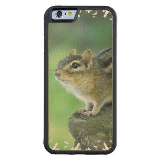 Curious Chipmunk Carved® Maple iPhone 6 Bumper Case