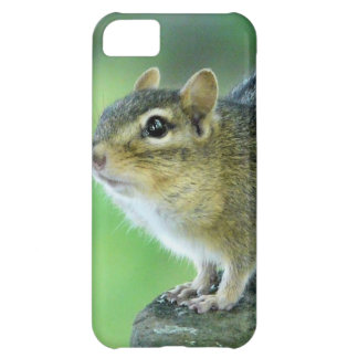 Curious Chipmunk Case For iPhone 5C