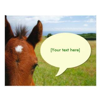 Curious colt with talk bubble flyer