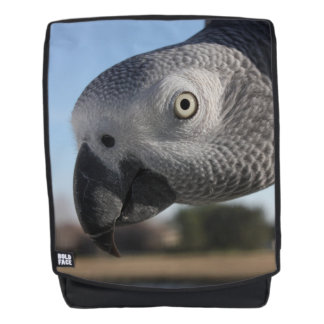 Curious Congo African Grey Parrot Backpack