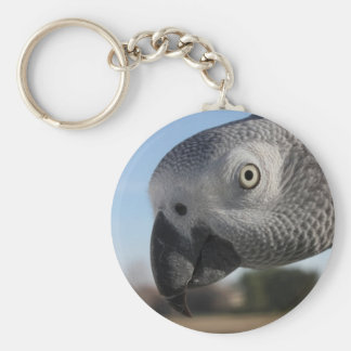 Curious Congo African Grey Parrot Keychain