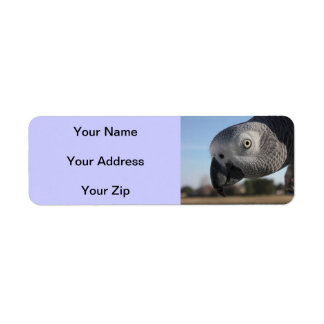Curious Congo African Grey Parrot Label