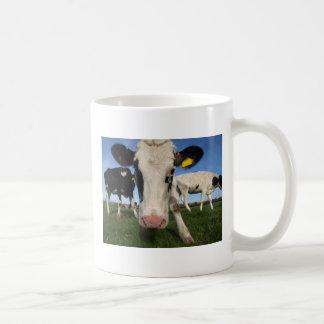 Curious Cow Coffee Mugs