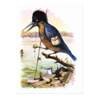 Curious Creatures - Bird Postcard
