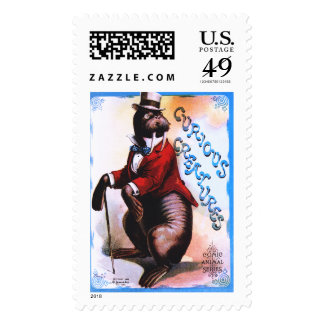 Curious Creatures - Seal Postage Stamp