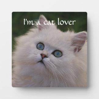 Curious cute white kitten plaque