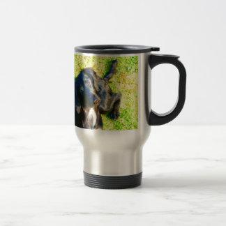 Curious dog  münster country mix travel mug