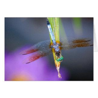 Curious Dragonfly Poem - card
