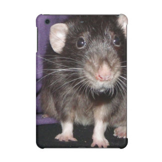 curious Dumbo rat iPad Mini Cases