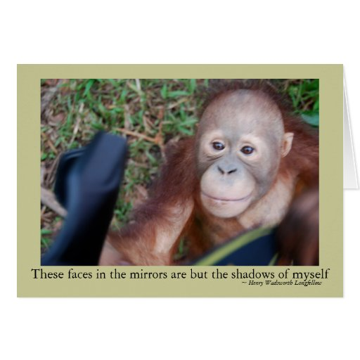 Curious Face in the Mirror Greeting Cards