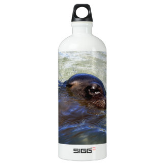 Curious friendly sea lion Galapagos Islands Aluminum Water Bottle