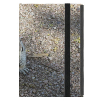 Curious Ground Squirrel Covers For iPad Mini
