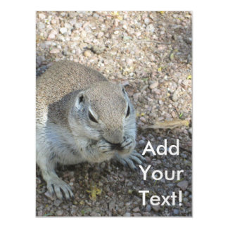 Curious Ground Squirrel Magnetic Card