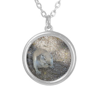 Curious Ground Squirrel Silver Plated Necklace