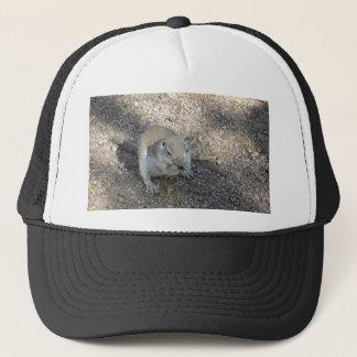 Curious Ground Squirrel Trucker Hat