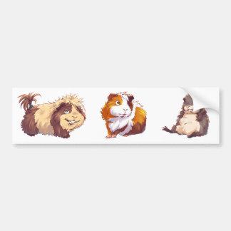 Curious Guinea Pig Car Bumper Sticker