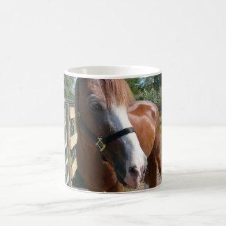 Curious Horse Classic White Coffee Mug