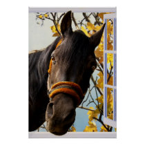Curious Horse Looking Through a Kitchen Window Poster