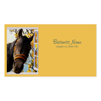 Curious Horse Looking Through The Kitchen Window Business Card Templates