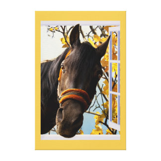 Curious Horse Looking Through The Kitchen Window Canvas Print