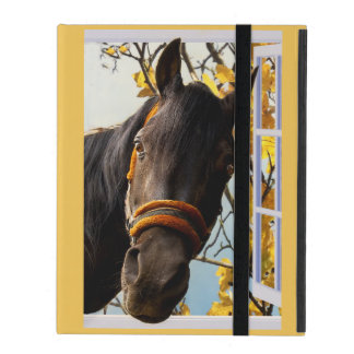 Curious Horse Looking Through The Kitchen Window iPad Cases