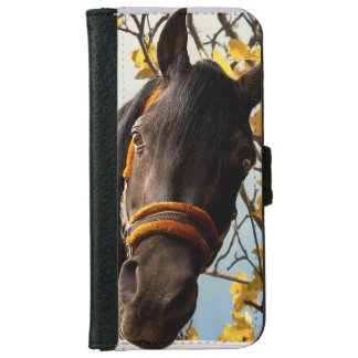 Curious Horse Looking Through The Kitchen Window iPhone 6 Wallet Case