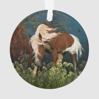 Curious Horse on a meadow