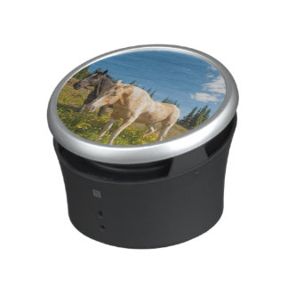 Curious horses foraging on grass bluetooth speaker