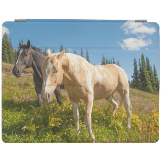 Curious horses foraging on grass iPad cover