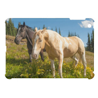 Curious horses foraging on grass iPad mini cases