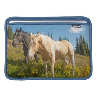 Curious horses foraging on grass sleeve for MacBook air