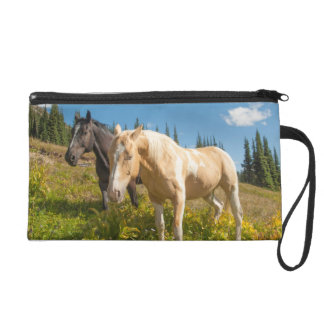 Curious horses foraging on grass wristlet