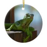 Curious Iguana Ceramic Ornament