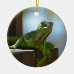Curious Iguana Double-Sided Ceramic Round Christmas Ornament
