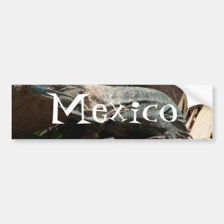 Curious Iguana; Mexico Souvenir Car Bumper Sticker
