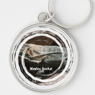 Curious Iguana; Mexico Souvenir Silver-Colored Round Keychain
