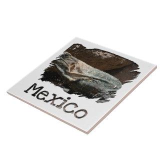 Curious Iguana; Mexico Souvenir Ceramic Tiles