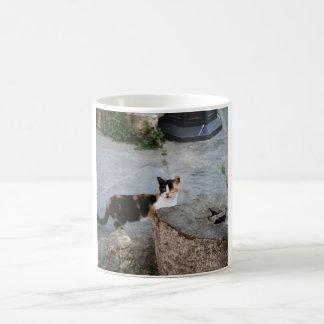 Curious Katrina Coffee Mug