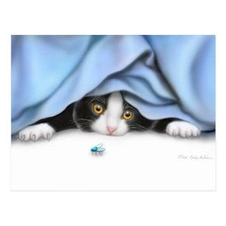 Curious Kitten Postcard