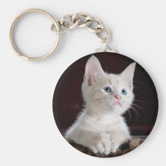 Curious kitty keychain