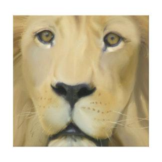 Curious Lion Canvas Print