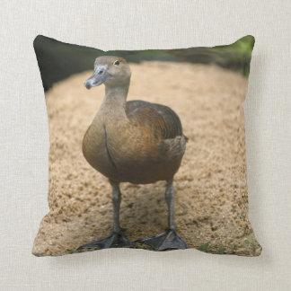 Curious little duck throw pillow
